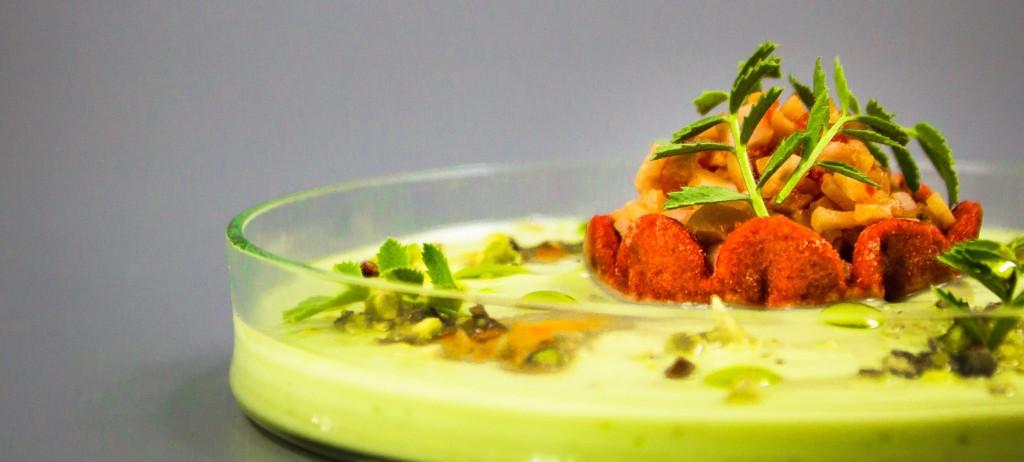supa de Avocado _ Nico Lontras